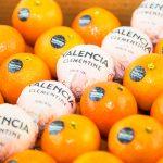 Sesión de fotografía de producto Naranja de Valencia